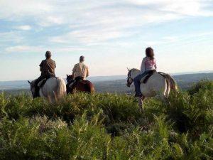 Rutas a caballo en la Vera