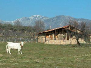Turismo rural Cáceres