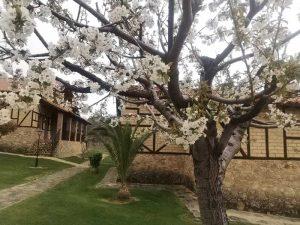 Casas rurales en Cáceres primavera
